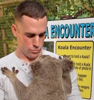 J-n-koala-in-Australia