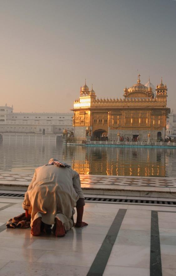 A_devotee_at_Gurudwara_Harmandir_Sahib,_Punjab_by_Koshy_Koshy