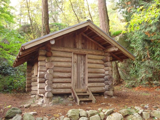 forest-lodge-181454_640