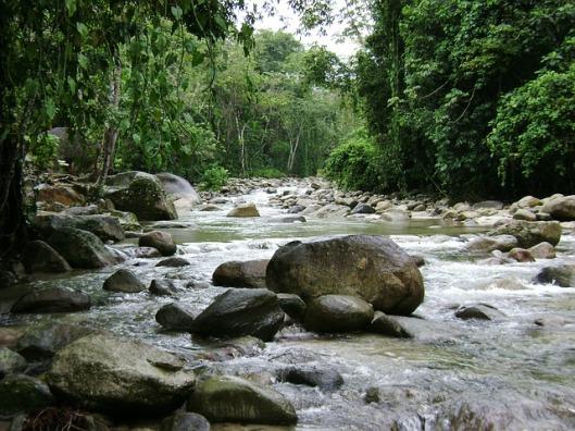 river-166095_640