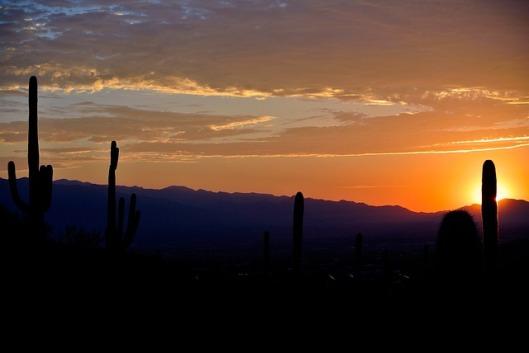 sunrise-72100_640