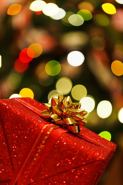 christmas-present-83120_640