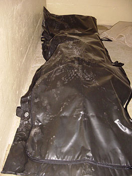 Abu_Ghraib_80_body_bag