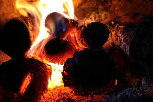 fire-326479_640