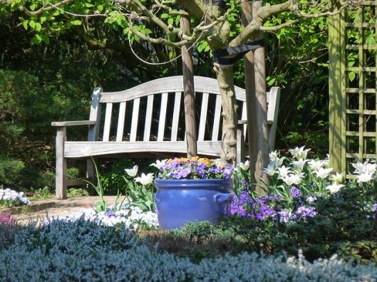 garden-141404_640