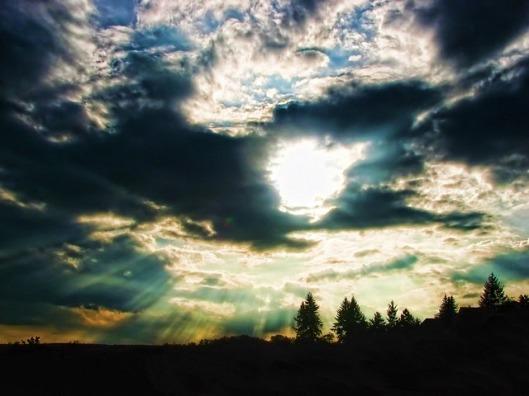 sunlight-202566_640