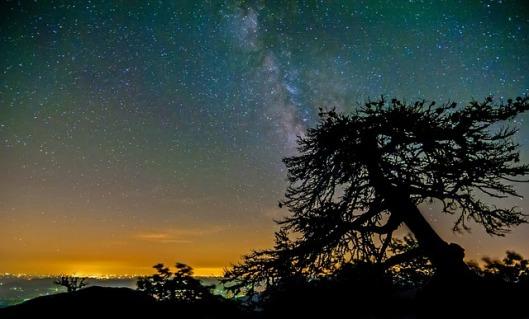 night-sky-219987_640