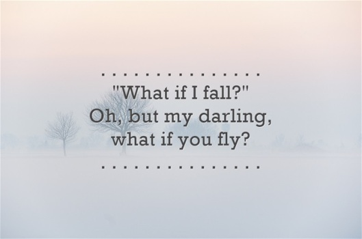 What-if-I-fall-Oh-but-(in-gray)