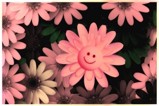 flowers-717609_640