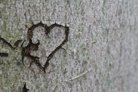 heart-431155_640