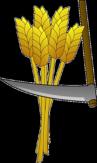 wheat-147293_640