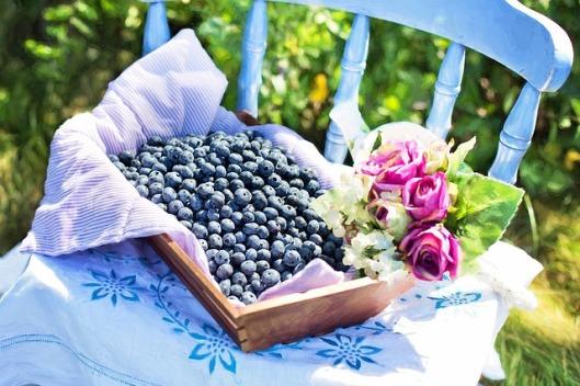 blueberries-870514_640