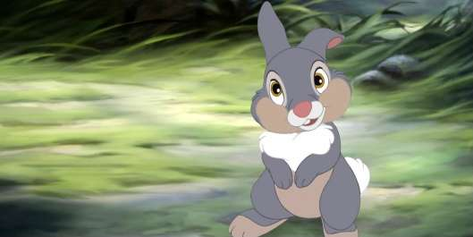 Image-Thumper-from-PhotoBucket