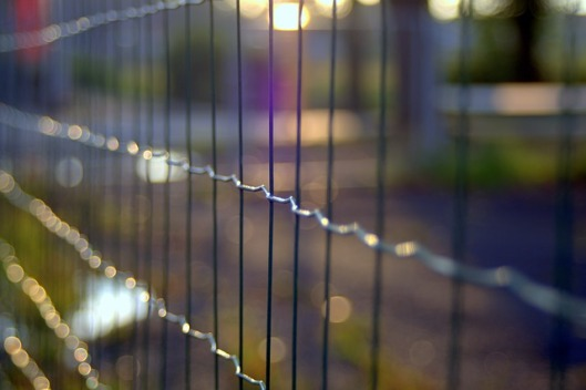 the-fence-1612939_640