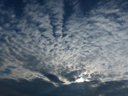 sky-116353_640